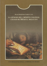 The origin of colonial credit. Mexico City, 16th century